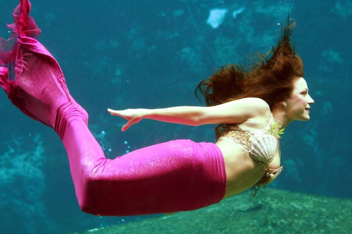 The Mermaid Summer Camp Of Your Dreams at Weeki Wachee